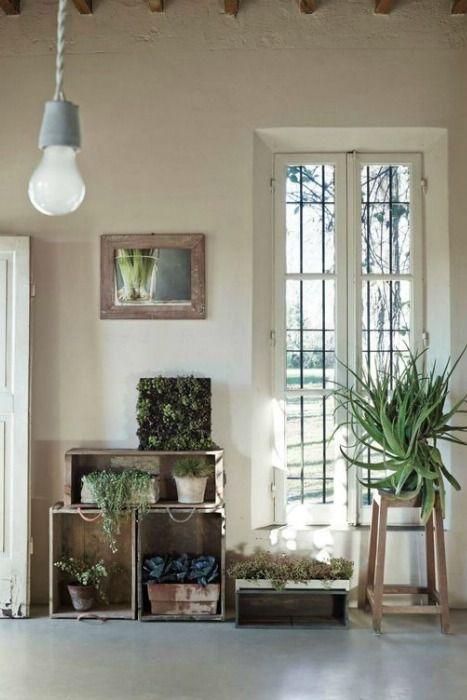 les 51 meilleures images du tableau jungle interior sur pinterest id es pour la maison. Black Bedroom Furniture Sets. Home Design Ideas