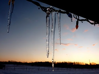 It gets cold on the prairies! Lacombe, Alberta