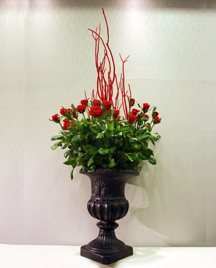 Αμφορέας με σύνθεση από τριαντάφυλλα