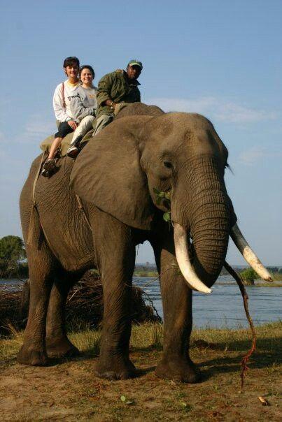 Nothing like riding an elephant! | A F R I C A