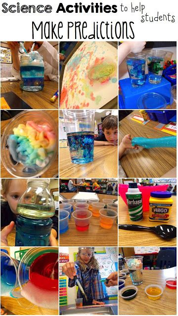 Science Activities to help students make predictions!