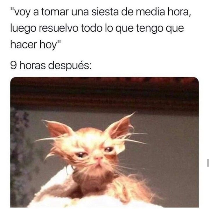 Risa Meme Memes Mexican Funny Memes Funny Spanish Memes Funny Friday Memes