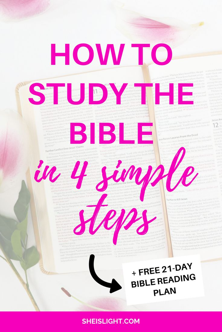 how to study 10 steps