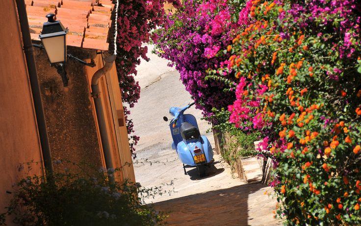 Les 7 meilleures images du tableau bormes les mimosas sur - Office du tourisme bormes les mimosas ...