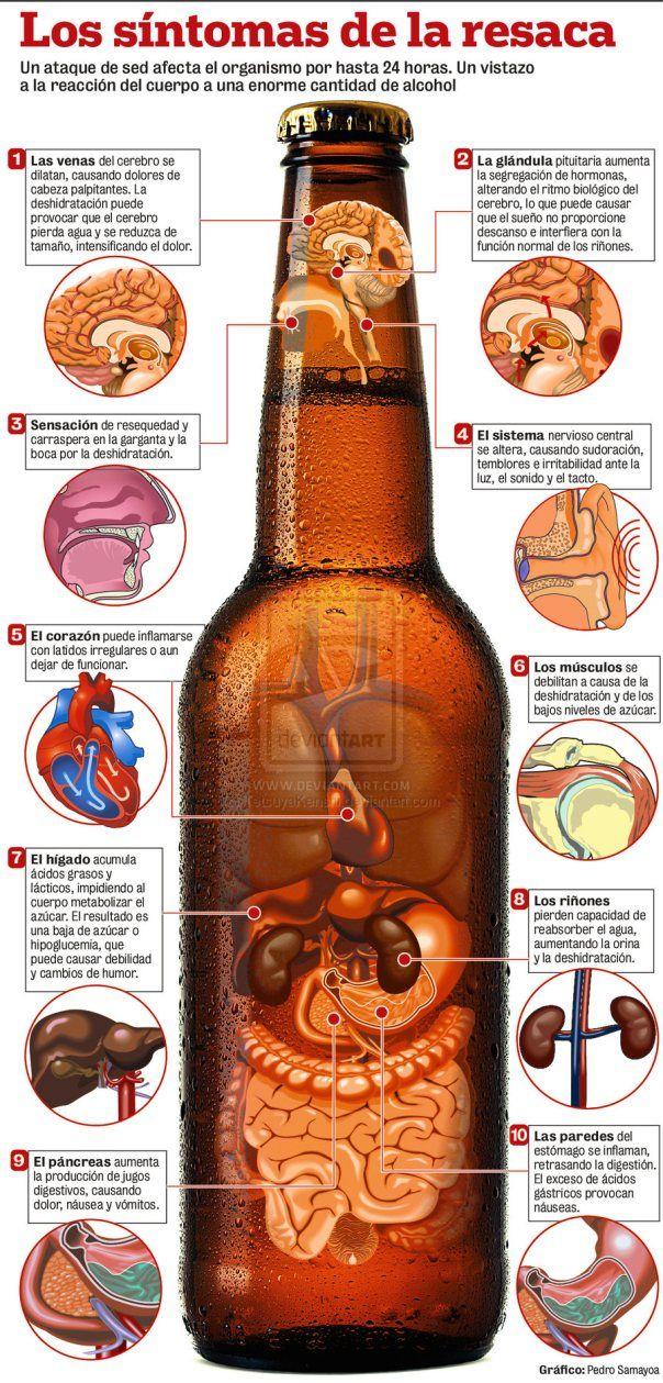 Coneixes els símptomes de la ressaca? Perquè el nostre cos actua com ho fa després de beure alcohol?