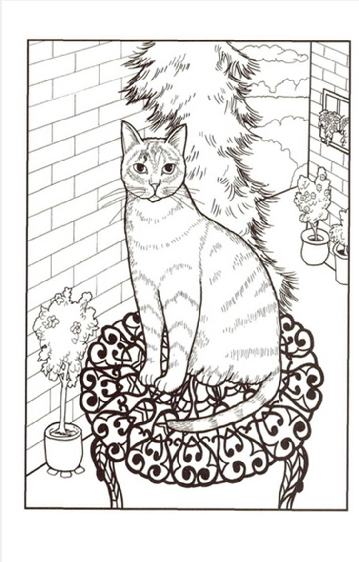 Stress relieving cats coloring - Cats Coloring Book By Mimi Vang Olsen For Adult Anti Stress Art Therapy
