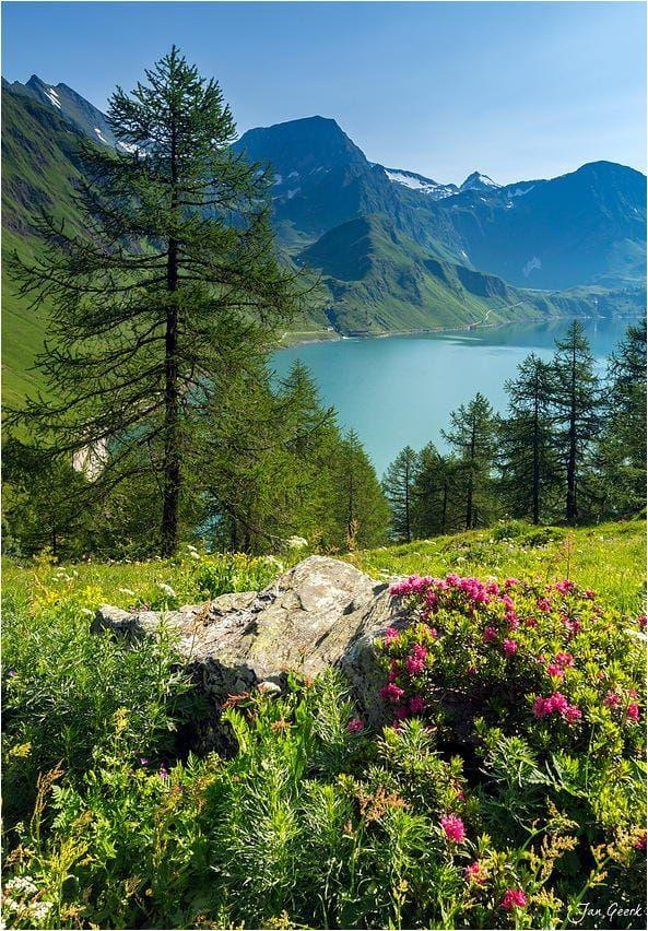 Summer in Swiss Alps by Jan Geerk