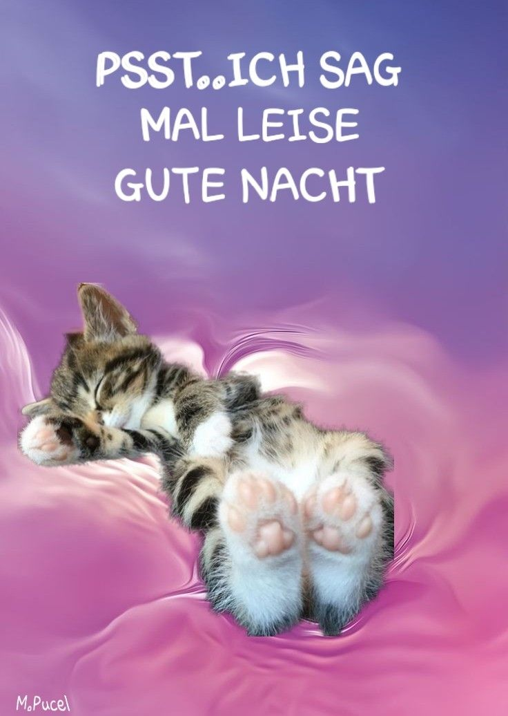 Gute Nacht Gute Nacht Gute Nacht Bilder Und Gute Nacht Grüße