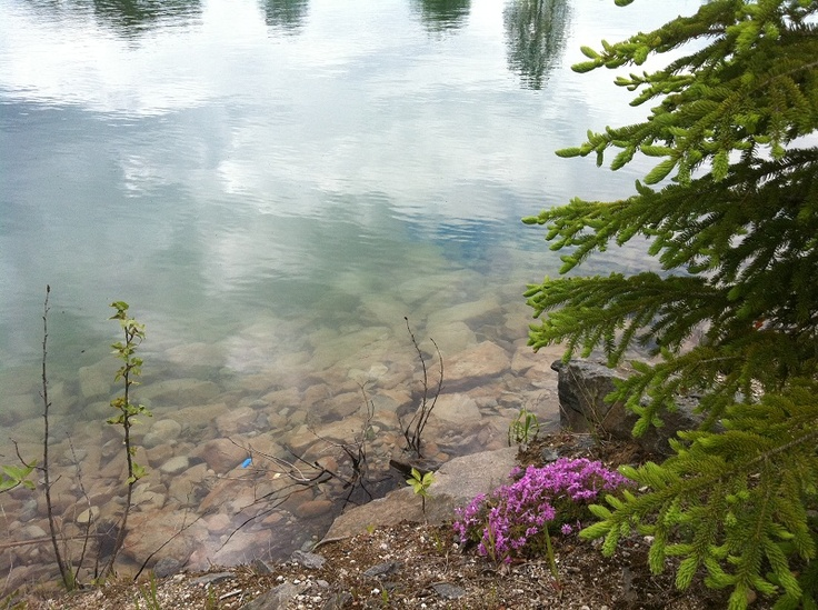 Natural beauty at Twin Lakes Park in Moonbeam, Ontario.