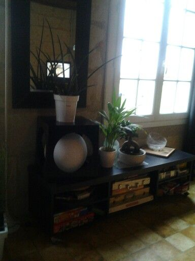 Banc a plantes..