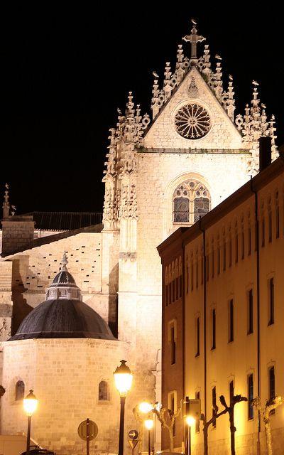 Catedral de Palencia - Spain