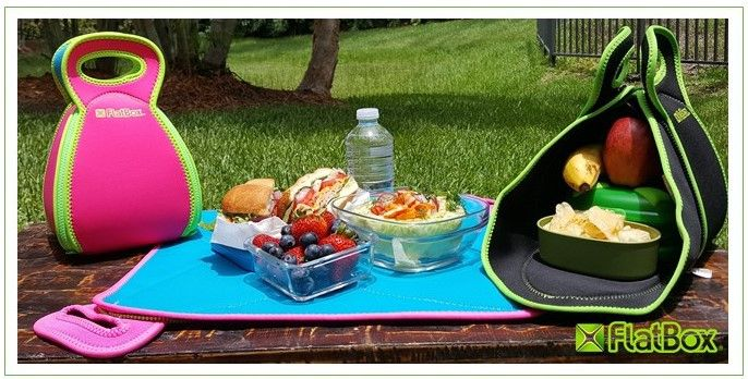 Large Flatbox Lunchbox - BLUE – allergypunk