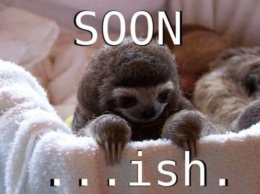 Funny Sloth Soon Meme Joke Picture
