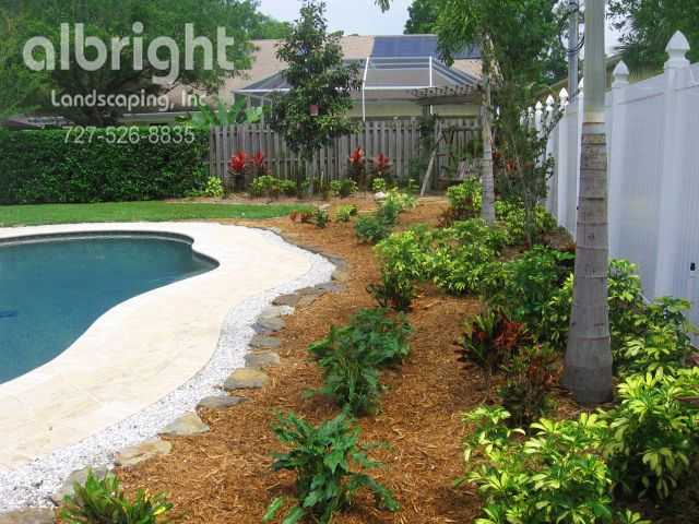 1000 Images About Pool Landscaping On Pinterest Pool