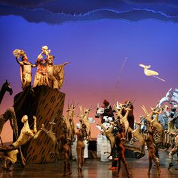 Lion King, great show, saw it at a Mayo staff event at ASU Gammage.