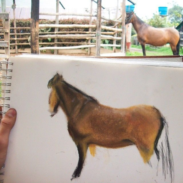and I Painting day with the beautiful  model Titánica de La Esmeralda  #arte #Artwork #art #horse #cavallo #drawing #draw #artoftheday #picoftheday #instaartist #instagood #colorful #pferd #life #like #love #me #pretty #style  #Colombia #paint #nice #cool #awesome #amaazing #pic #sun #tattoo #beautiful  #caballo #cavalier #cavalo #horse #pasofino #mustang #colombia #art #arte #artist #artwork #paint #draw #drawing #love #me #like #oilpaint #artoftheday #picoftheday #instagood #instacool
