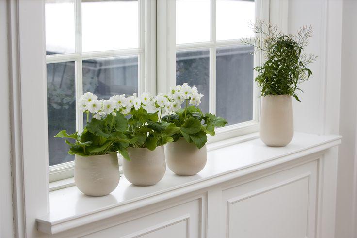 Tegye kényelmesebbé ablakában való könyöklését Helopal Ablakkönyöklőinkkel!  http://www.farkasep.hu/index.php?inc=product&ref=191