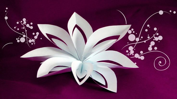 Layered Paper Flower Cutting and Folding Technique