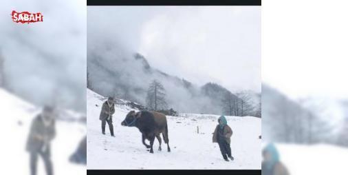 Kalandar Soğuğu Oscar yolunda: Yönetmenliğini Mustafa Karanın yaptığı Kalandar Soğuğu filmi Türkiyeyi 89. Akademi Ödüllerinde (Oscar) temsil edecek  #Kalandar #Soğuğu #Akademi #Ödülleri #temsil