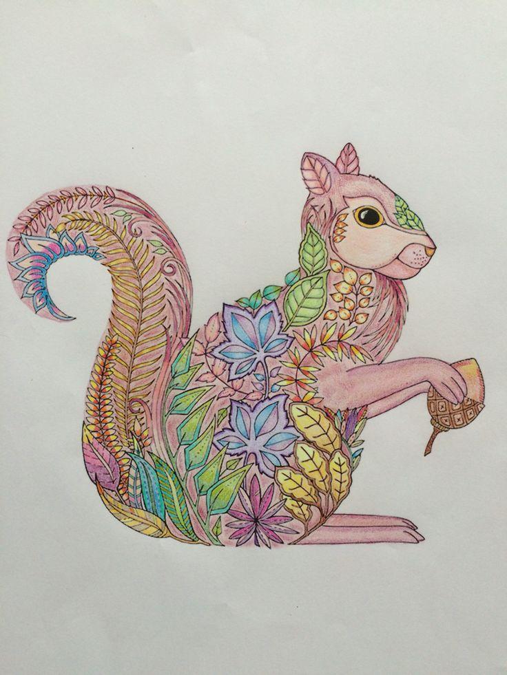 Johanna Basford - Enchanted Forest - Floresta Encantada - squirrel
