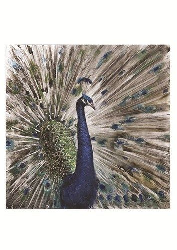 Peacock Oil Painting on Canvas Wall Art