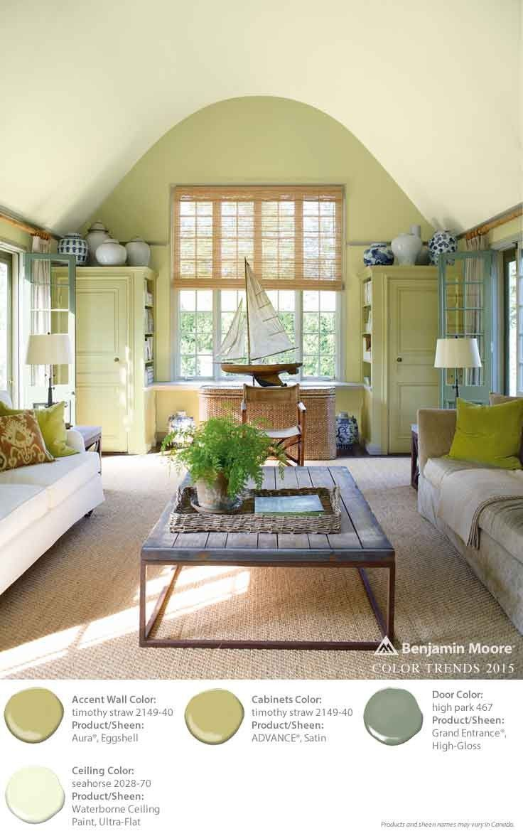 184 best rooms images on pinterest living room ideas for Benjamin moore eco spec paint reviews