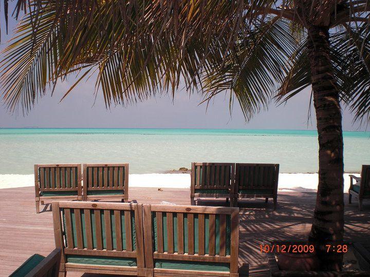Bar Meeru Island Resort