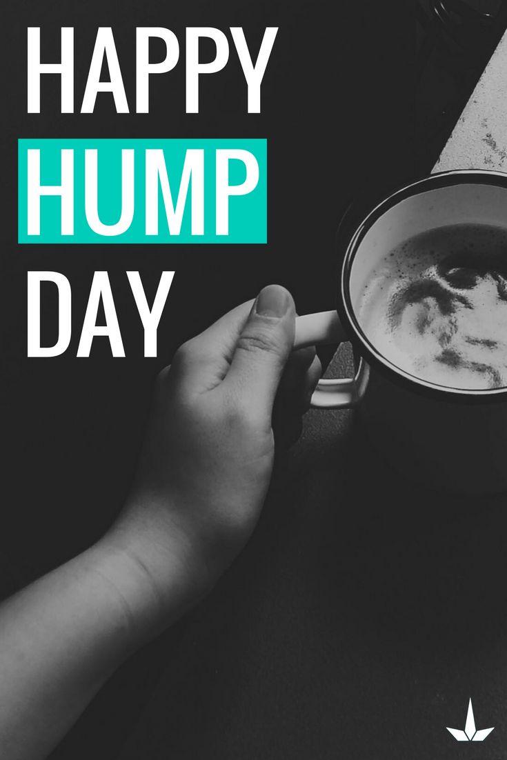 Happy hump day!   #Wednesday #HumpDay #WorkWorkWork