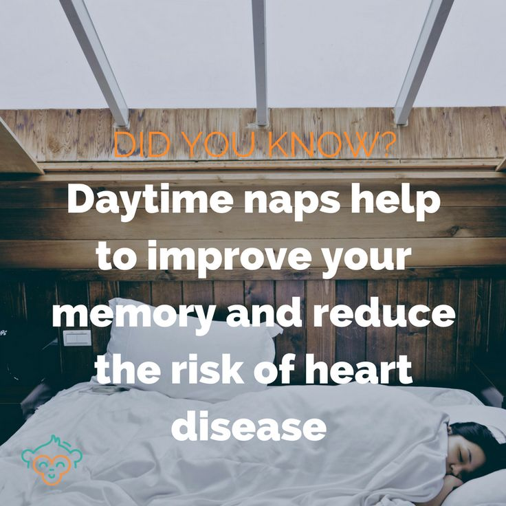 There are so many things that make taking an afternoon snooze good for you... #napping #sleep #wellbeing #healthfacts #didyouknow #didyouknowfacts #LifeBuddi