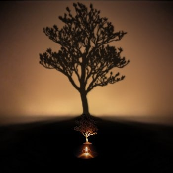 Tree Shadow Projecting Oil Lamp. 6 realistic tree and bird options. $55.00