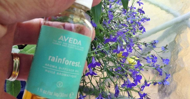 A few years ago we stayed at a hotel in Denver Colorado that had an Aveda Spa next door. I have always loved Aveda hair products, so I s...