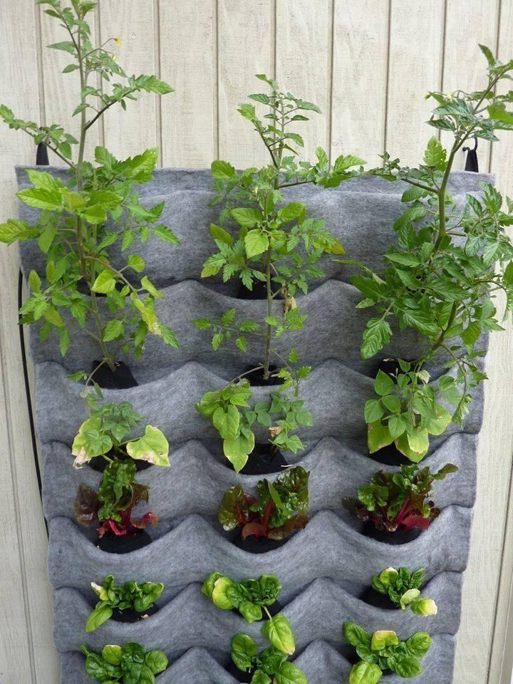 17 mejores ideas sobre jardines verticales caseros en - Huerto vertical casero ...