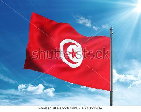 Tunisia flag waving in the blue sky