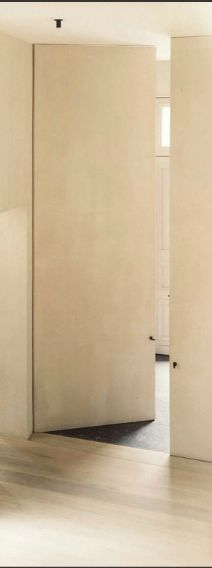 Full Height Flush Panel Door With Pivot Hinge Concealed Frame Delight Yoga Studio