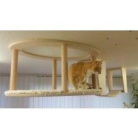 Katzenmöbel aus Deutschland, hochwertige Schreinerarbeit für ein katzengerechtes Leben in der Wohnung. Von Tierärzten empfohlen. Bei Goldtatze-Produkten handelt es sich um eine wohl durchdachte Modulbauweise die jederzeit erweiterbar ist.