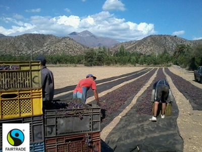 Fairtrade farmers in Chile go for all natural, sun-dried brown raisins and they went the extra step to make sure their buyers understood why. Learn more. #Fairtrade