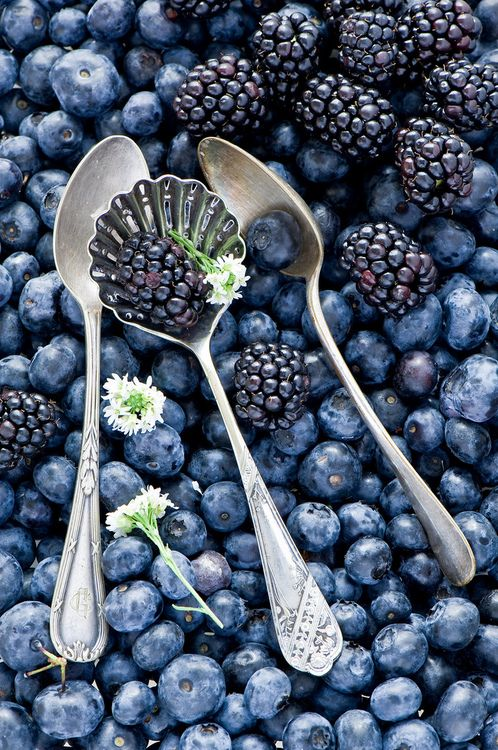25+ best ideas about Purple Fruit on Pinterest | Fig fruit ...
