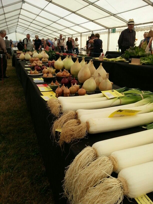 Thame Show 3