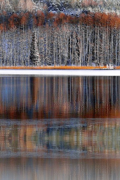Winter reflections, Regional Park, Lithuania, by Regina Lietuva, on 500px.