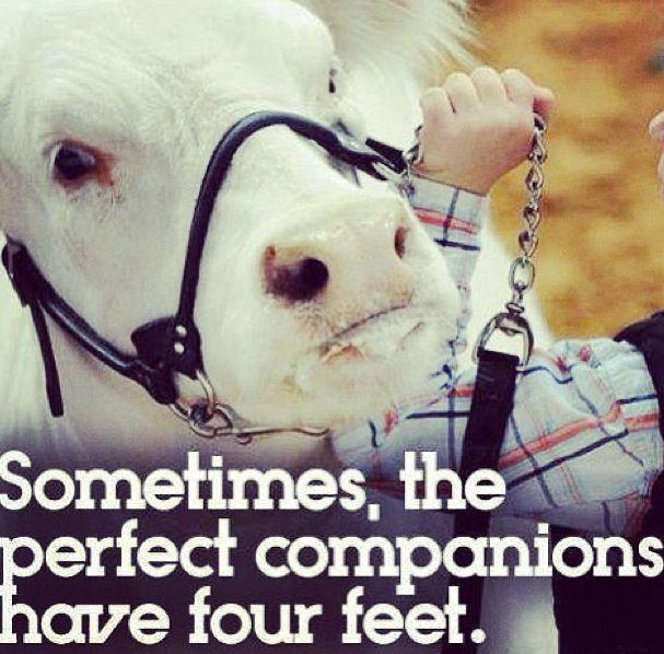 My animals are my besties ✌️