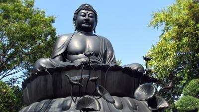 """Tokyo Buddha"" , one of the three major Japanese Buddha statues, and unique stone statues. - Japan Tourism [Oshiete! goo]"