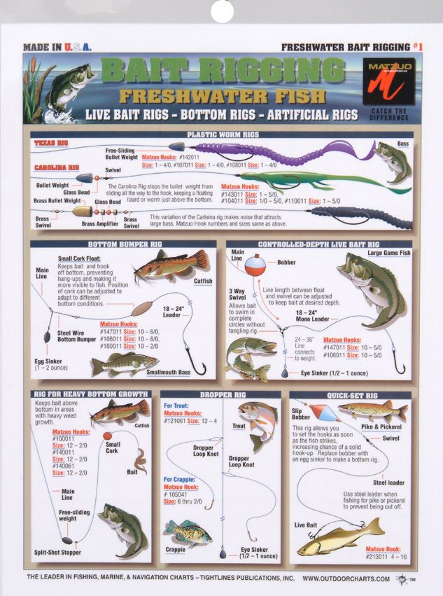 2129 best images about bass fishing on pinterest bass for Bass fishing tips