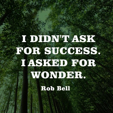 I didn't ask for success. I asked for wonder. — Rob Bell