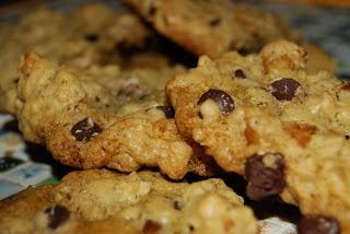 chocolate walnut oatmeal VEGAN cookies