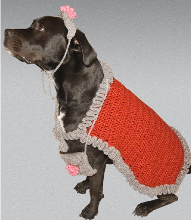 Free Crochet Patterns For Dog Halloween Costumes : 1000+ images about crochet for dogs and cats on Pinterest ...