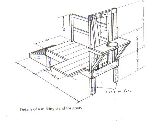 Goat Milking Stand Plans Building A New Milkstand