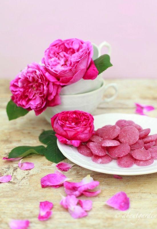 bon bon alla rosa