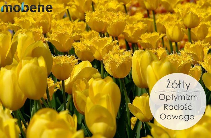 Żaden inny kolor nie kojarzy się tak pozytywnie jak żółty!  Dodaj go do swojego mieszkania! Może zasłony w kolorze słońca? #żółty #słońce #zasłony #meble #mobene