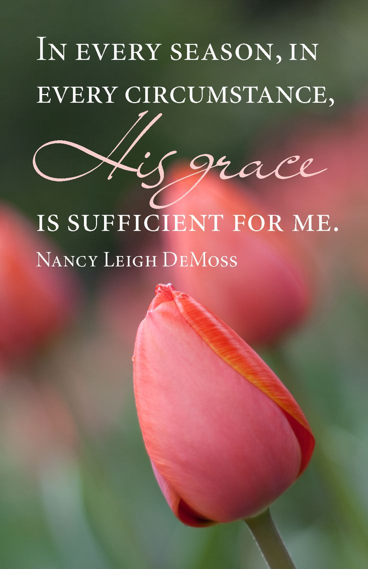 """""""In every season, in every circumstance, His grace is sufficient for me.""""  Nancy Leigh DeMoss More at http://ibibleverses.christianpost.com/"""