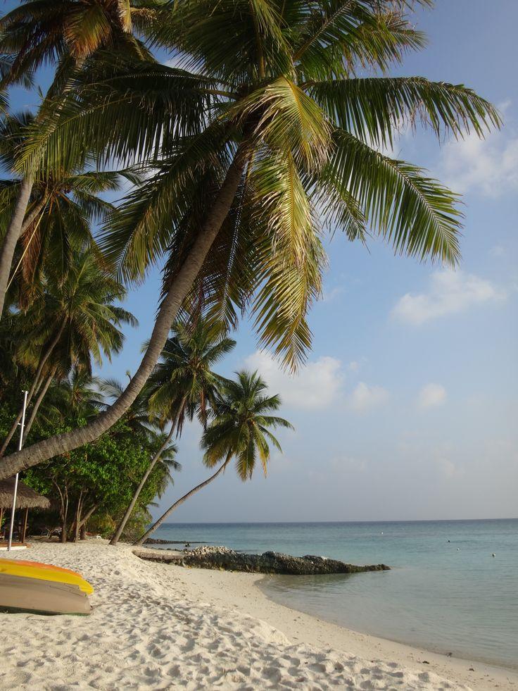 Fihaholi, Maledives